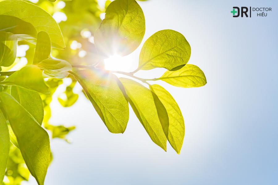 Sai lầm 7: Để da tiếp xúc với ánh nắng mặt trời quá lâu